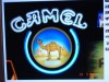 Neon Sign (Camel) - $125